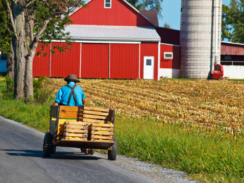 Les Amish ont-ils quelque chose à nous apprendre ?