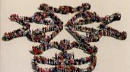 Livre : La nouvelle France protestante