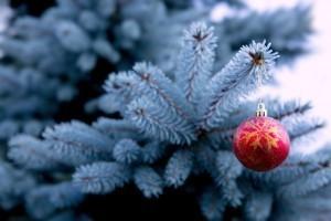 Fêter Noël dans les familles multiconfessionnelles