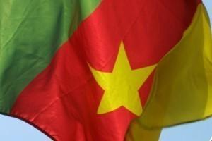 Cameroun : un pays en guerre ?