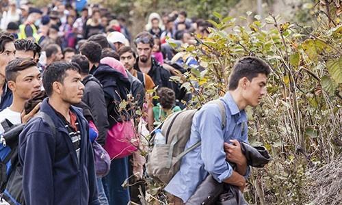 Migrant, réfugié, exilé ?