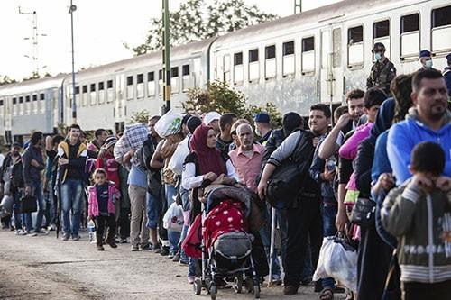 Les migrants, un parcours entre espoir et souffrances