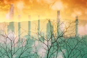 Terre créée, terre abîmée, terre promise... La FPF s'engage pour le climat !