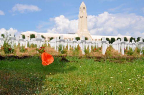 Verdun, un dyptique
