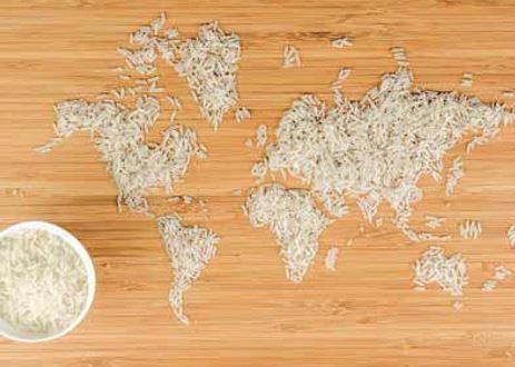 Nourriture et identité culturelle