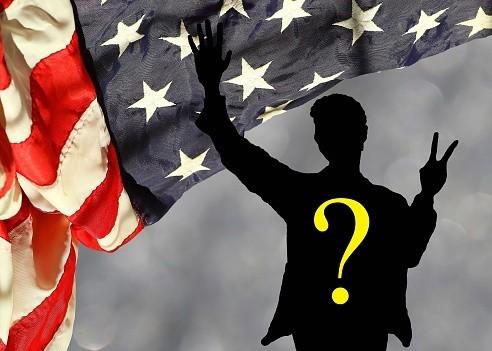 Qui a voté pour Donald Trump ?