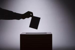 Pourquoi voter malgré tout ?