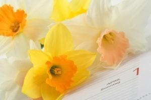 En avril, vous avez aimé...