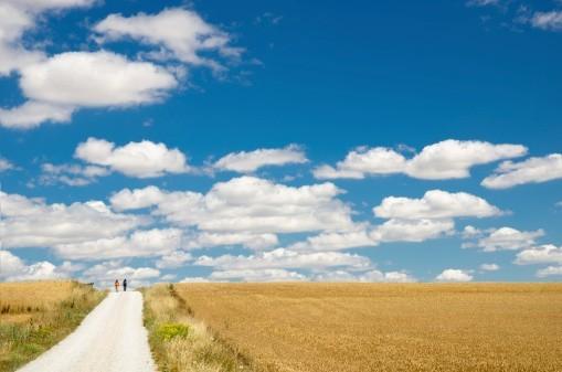 Marcher libres au travers d'un monde qui veut nous attacher