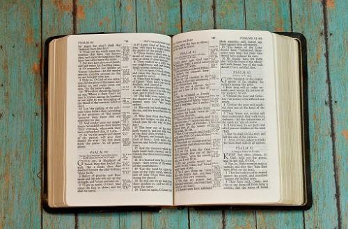 Bible : la chute des prix