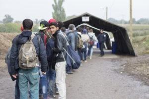 Accueil des réfugiés : nous avons besoin de vous !