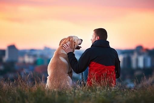 L'être humain et les animaux, bénis de Dieu