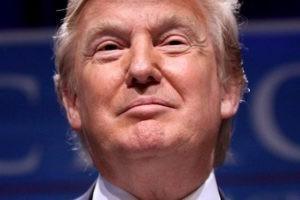 Trump, les réseaux sociaux et nous