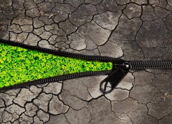 Le défi de la transition écologique