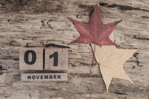 En novembre, vous avez aimé…