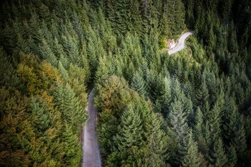Climat : vivre l'écologie au quotidien