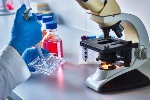 Les protestants et les questions de bioéthique