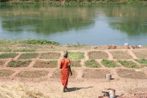 L'agroécologie, un chemin vers l'émancipation de la femme