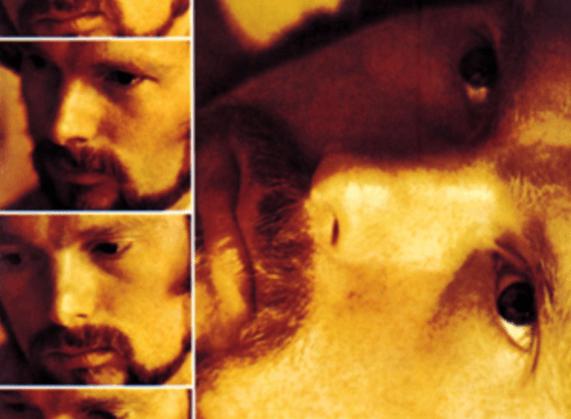 "Que retenir de l'album ""Moondance"" de Van Morrison ?"