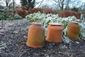 Comment s'occuper de son jardin en hiver ?