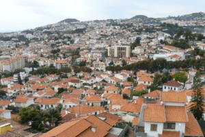 Rencontre surprenante en terre portugaise