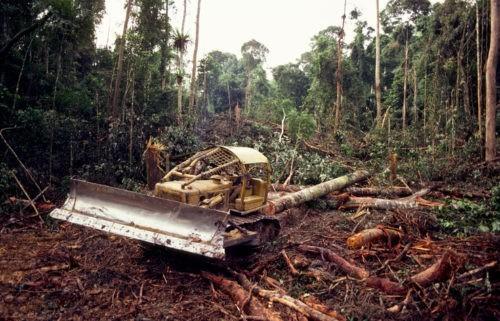 Les défis écologiques sont-ils aussi spirituels ?