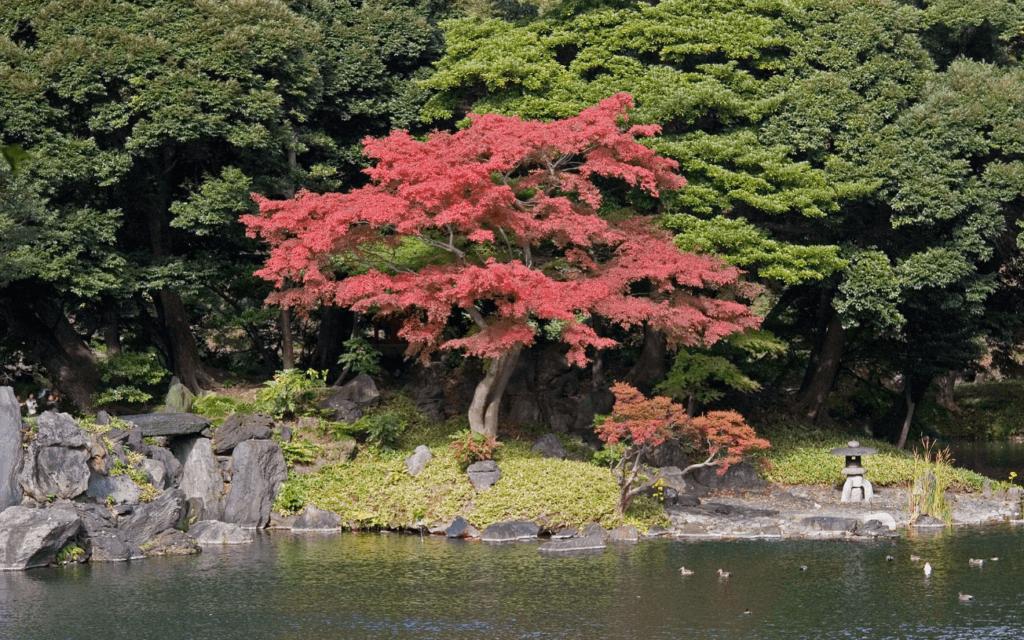 La pensée du jardin japonais
