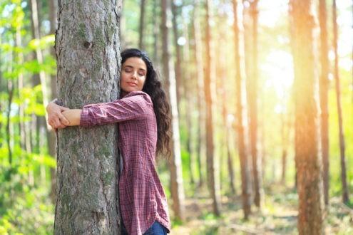 Les arbres, ces amis qui nous veulent du bien
