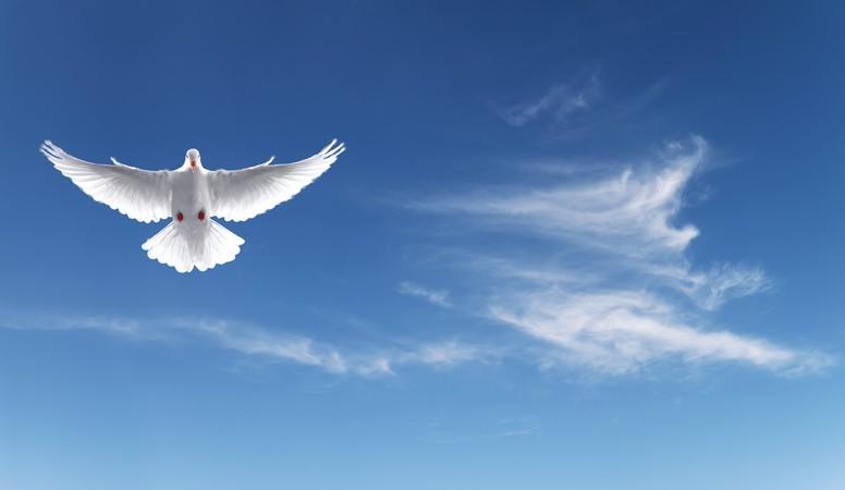 A quand enfin une ère de paix ?