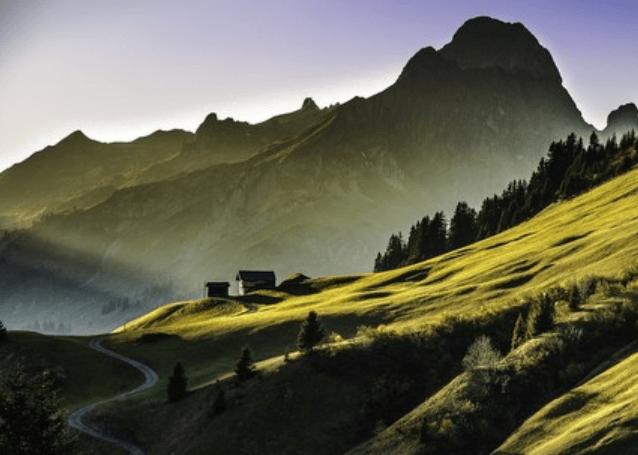 L'écologie dans la Bible