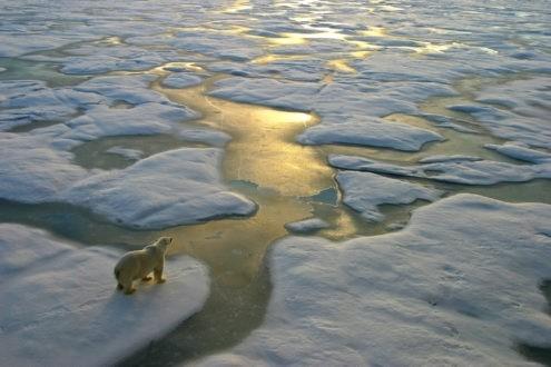 Limiter le réchauffement climatique à 1,5 °C !