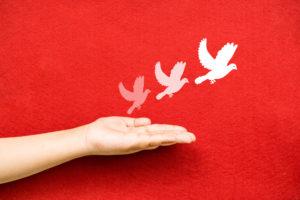 Comment trouver la paix au quotidien ?