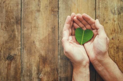 Les chrétiens doivent-ils être écologistes ?