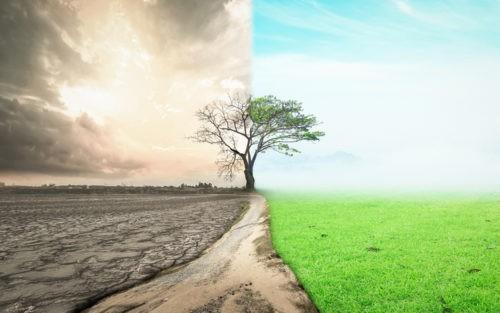 Pour une transition écologique populaire