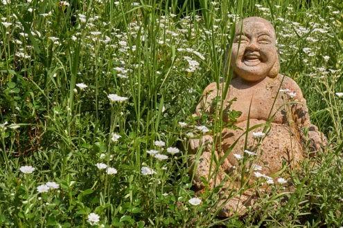 Comprendre les multiples enseignements de Bouddha
