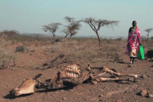 L'injustice climatique : une réalité avérée