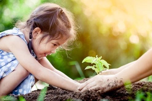 4 idées pour sensibiliser les enfants à l'écologie