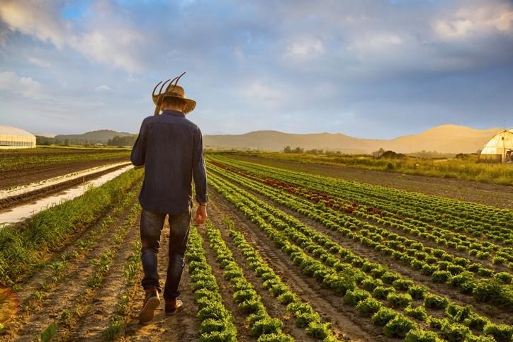 Le ras-le-bol justifié des agriculteurs