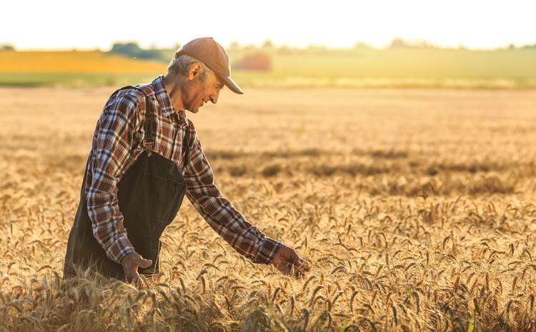 Des agriculteurs parlent de leur rapport à Dieu