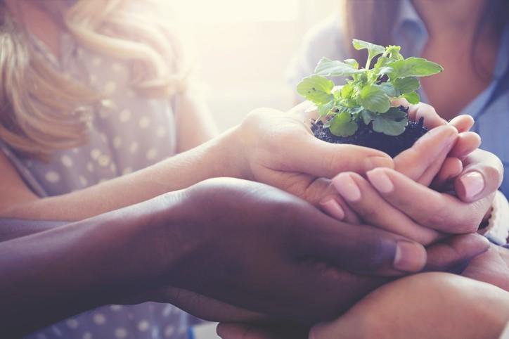 Écologie, morale et Évangile