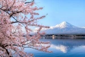 12 habitudes à emprunter aux Japonais