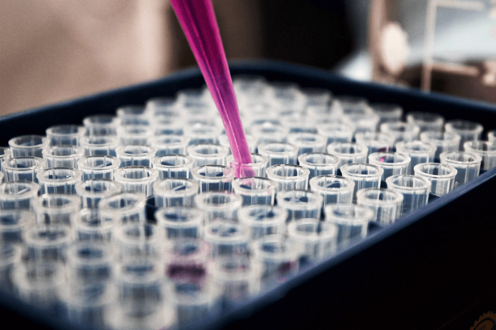 Révision des lois de bioéthique, c'est parti !