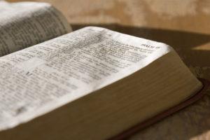 Le livre des prières brutes