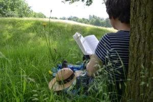 Lectures de l'été : théologie