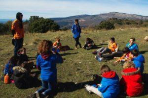 Que font les scouts durant l'année et l'été ?