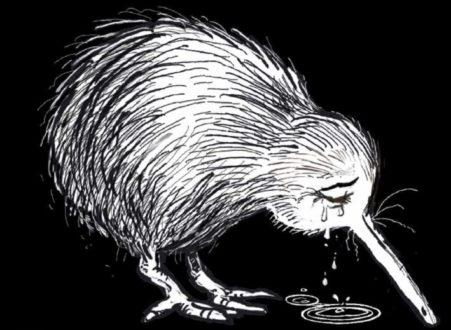 Attentats terroristes islamophobes en Nouvelle-Zélande