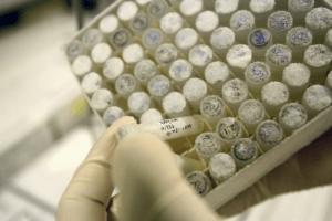 Une révision de la loi sur la bioéthique et la PMA à la rentrée