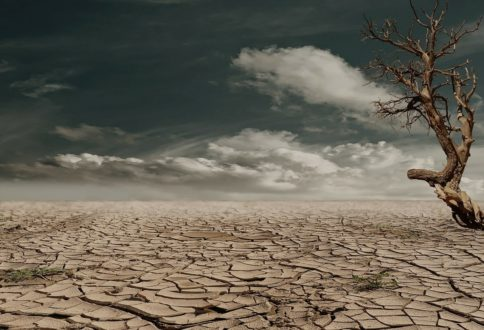 Mini-forum : l'urgence nous rattrape