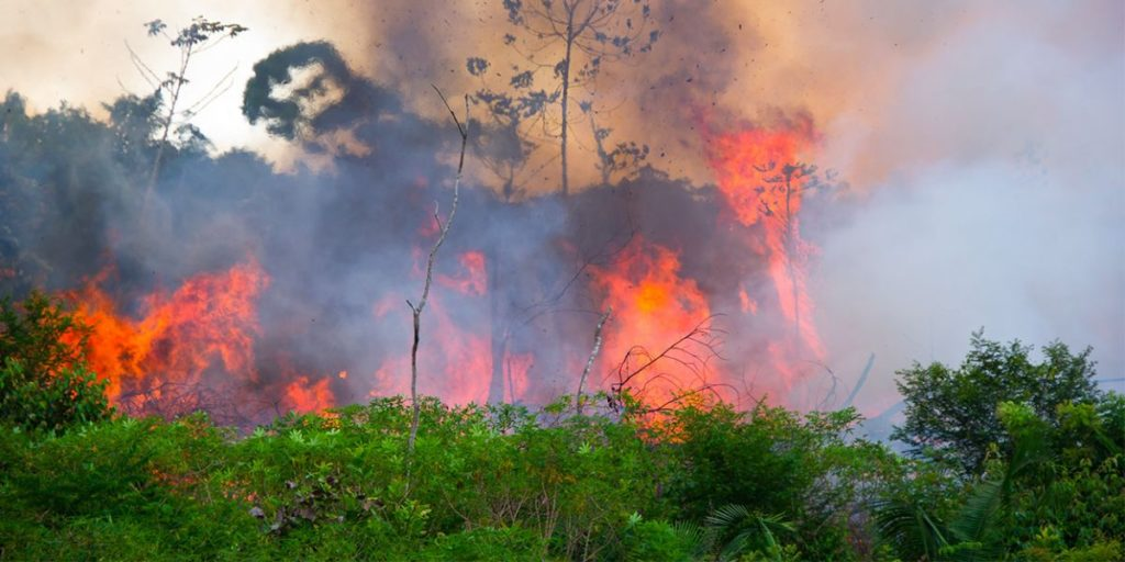 « Si l'Amazonie souffre, le monde souffre »