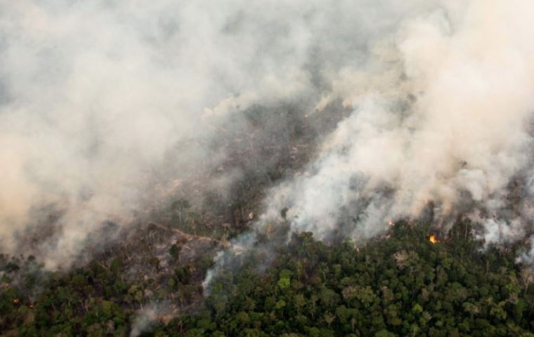 Incendies en Amazonie : la nécessité d'une réponse internationale